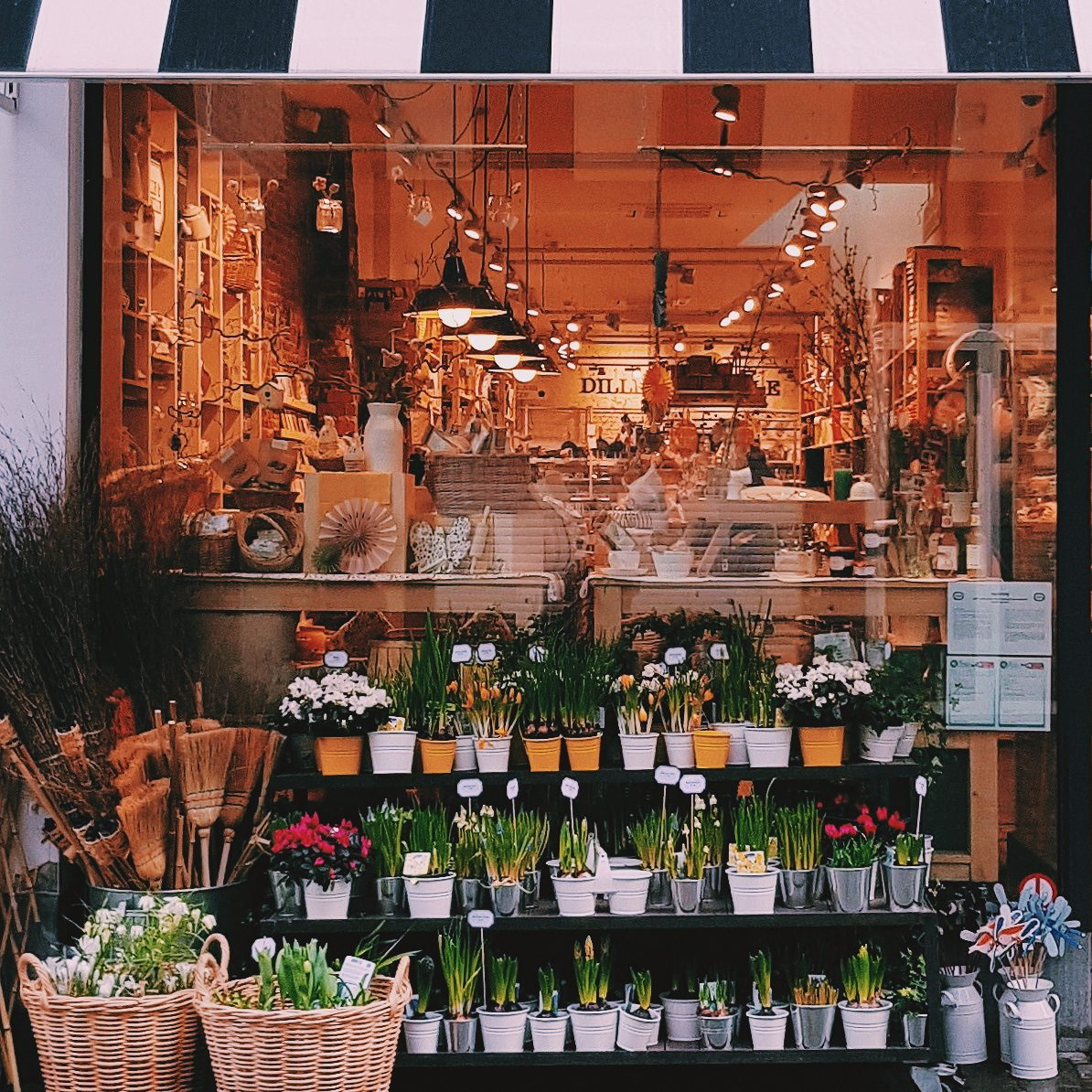 Flower shop front in Brussels