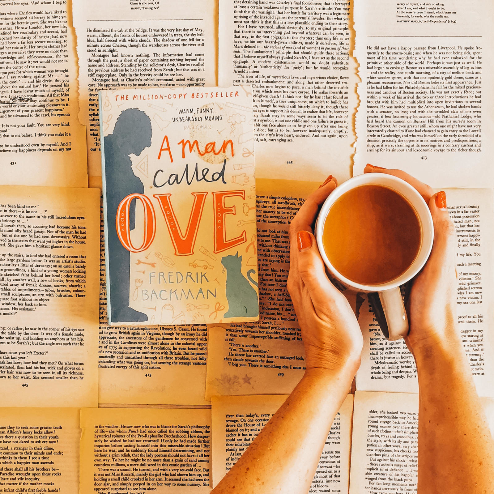 A Man Called Ove (Fredrik Backman)
